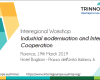 "Conferenza ""Industrial Modernisation and Interregional Cooperation"""