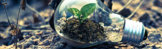 Nuovi bandi di ricerca e sviluppo – Ministero Ambiente